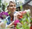 6 Dicas de jardinagem e truques simples para cuidar do seu jardim