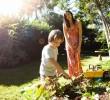 Receitas caseiras para cuidar do Jardim