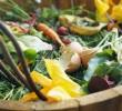 Como preparar uma compostagem, para adubar meu jardim